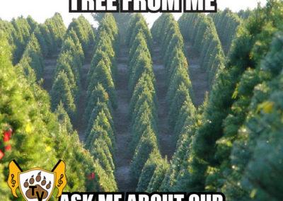 christmas-tree-fundraiser-meme-03