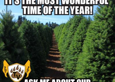 christmas-tree-fundraiser-meme-04