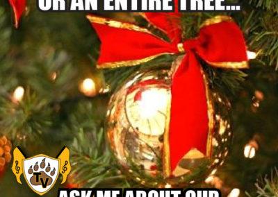 christmas-tree-fundraiser-meme-08