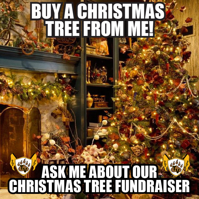 Christmas Tree Meme.Wood Mountain Christmas Tree Fundraiser Tvhs Golden Valley